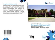 Bookcover of Bergstein (Hürtgenwald)