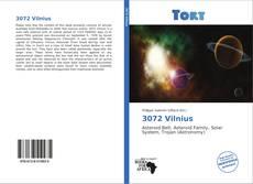 Buchcover von 3072 Vilnius