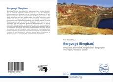 Buchcover von Bergvogt (Bergbau)