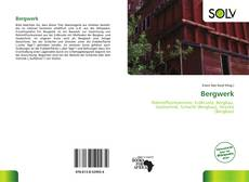 Bookcover of Bergwerk