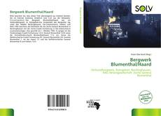 Portada del libro de Bergwerk Blumenthal/Haard