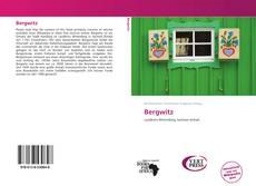 Capa do livro de Bergwitz