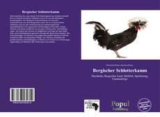 Buchcover von Bergischer Schlotterkamm