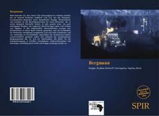 Capa do livro de Bergmann