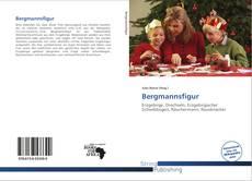 Bookcover of Bergmannsfigur