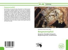 Bookcover of Bergmannspfad