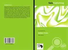 Buchcover von Seldon Crisis