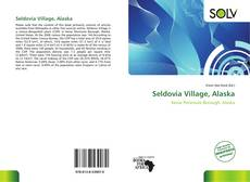 Buchcover von Seldovia Village, Alaska