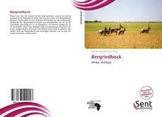 Обложка Bergriedbock