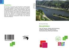 Bergfelden kitap kapağı