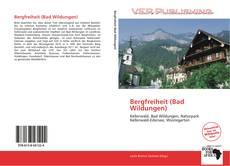Bookcover of Bergfreiheit (Bad Wildungen)