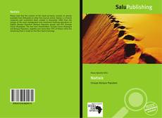 Natixis kitap kapağı
