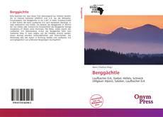 Berggächtle kitap kapağı