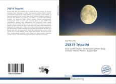 Buchcover von 25819 Tripathi