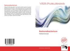 Natronobacterium kitap kapağı