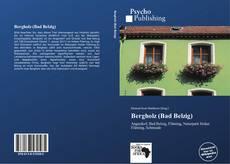 Bookcover of Bergholz (Bad Belzig)