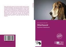 Capa do livro de Otterhound
