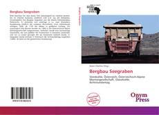Buchcover von Bergbau Seegraben