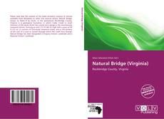 Bookcover of Natural Bridge (Virginia)