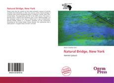 Bookcover of Natural Bridge, New York