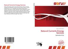 Natural Currents Energy Services kitap kapağı