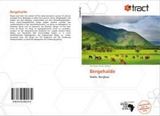 Borítókép a  Bergehalde - hoz