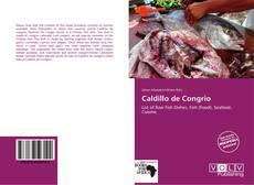Buchcover von Caldillo de Congrio