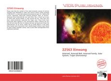 Bookcover of 22563 Xinwang