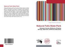 Capa do livro de Natural Falls State Park