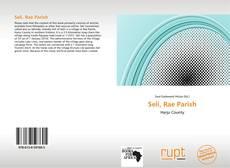 Bookcover of Seli, Rae Parish