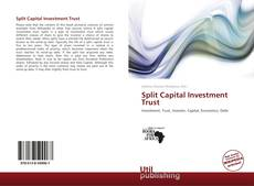Buchcover von Split Capital Investment Trust