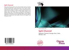 Capa do livro de Split Channel