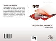 Обложка Seligman Baer Bamberger