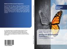 Bookcover of Adolescent Bereavement Experience