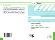 Bookcover of Split Rock Dam
