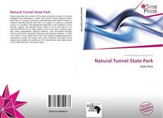 Natural Tunnel State Park的封面