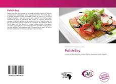 Buchcover von Polish Boy