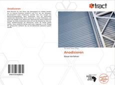 Buchcover von Anodisieren