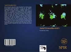 Antal Grassalkovich I.的封面