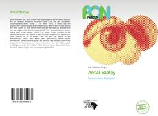 Bookcover of Antal Szalay