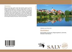 Bookcover of Walsleben