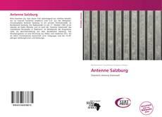 Buchcover von Antenne Salzburg