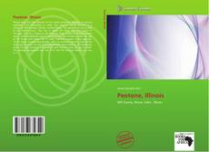 Bookcover of Peotone, Illinois