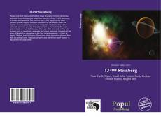 Bookcover of 13499 Steinberg