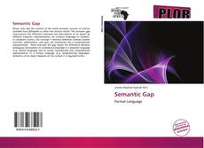 Bookcover of Semantic Gap