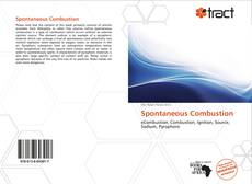 Bookcover of Spontaneous Combustion