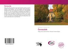 Buchcover von Černouček