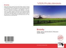 Couverture de Brzánky