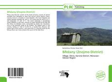 Bookcover of Břežany (Znojmo District)