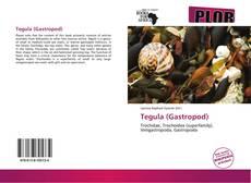 Обложка Tegula (Gastropod)